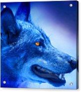 Alpha Wolf Acrylic Print by Mal Bray