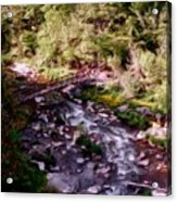 Altered States At The Park Acrylic Print by David Lane