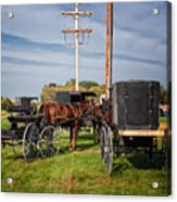 Amish At The Auction Acrylic Print by Al  Mueller