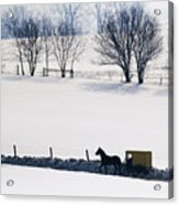 Amish Horse And Buggy In Snowy Landscape Acrylic Print by Jeremy Woodhouse