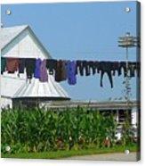 Amish Laundry Acrylic Print by Lori Seaman
