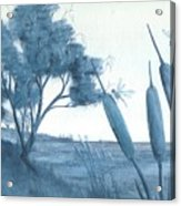 Among The Cattails... No. Four Acrylic Print by Robert Meszaros