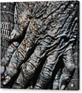Ancient Hands Acrylic Print by Skip Nall