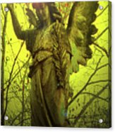 Angel Of Bless No. 04 Acrylic Print by Ramon Labusch