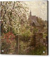 Apple Blossom Acrylic Print by Alfred Muhlig