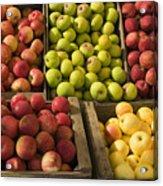 Apple Harvest Acrylic Print by Garry Gay