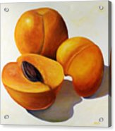 Apricots Acrylic Print by Shannon Grissom