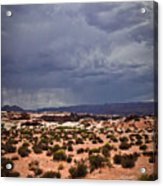 Arizona Rainy Desert Landscape Acrylic Print by Ryan Kelly