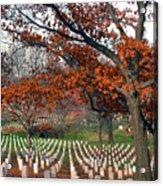 Arlington Cemetery In Fall Acrylic Print by Carolyn Marshall