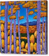 Aspen Country II Acrylic Print by Johnathan Harris
