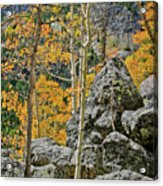 Aspens Rocks And Longs Peak Acrylic Print by Brent Parks