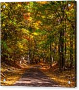 At A Loss For Words Acrylic Print by Robert Pearson