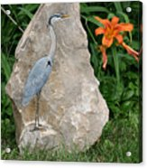 At Waters Edge Acrylic Print by Ken Hall