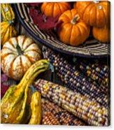 Autumn Abundance Acrylic Print by Garry Gay