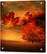 Autumn Blaze Acrylic Print by Lourry Legarde