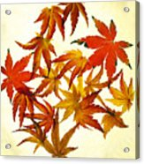 Autumn Flury Acrylic Print by Rebecca Cozart