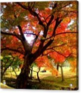 Autumn Leaves 2 Acrylic Print by Roberto Alamino