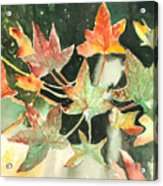 Autumn Leaves Acrylic Print by Arline Wagner