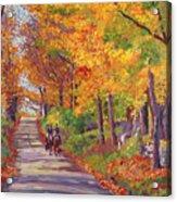 Autumn Ride Acrylic Print by David Lloyd Glover
