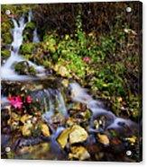 Autumn Stream Acrylic Print by Chad Dutson
