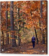 Autumn Stroll Acrylic Print by Gayle Johnson