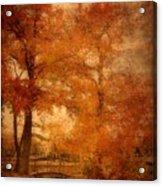 Autumn Tapestry - Lake Carasaljo Acrylic Print by Angie Tirado