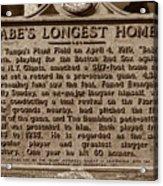 Babes Longest Homer Acrylic Print by David Lee Thompson