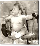 Baby Boxer Acrylic Print by Daniel Napoli