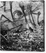 Back Alley Graffiti  Acrylic Print by Dustin K Ryan