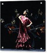 Bailarina Orgullosa Del Flamenco Acrylic Print by Richard Young