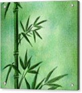Bamboo Acrylic Print by Svetlana Sewell