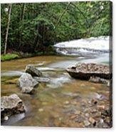 Bartlett Experimental Forest - Bartlett New Hampshire Usa Acrylic Print by Erin Paul Donovan