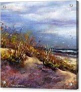 Beach Dune 1 Acrylic Print by Peter R Davidson