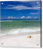 Beach Splendour Acrylic Print by Janet Fikar