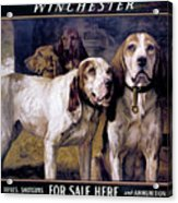 Bear Dogs Acrylic Print by H R Poore
