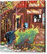 Bear Post Acrylic Print by Nadi Spencer