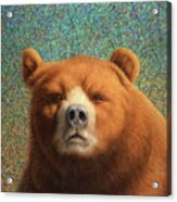Bearish Acrylic Print by James W Johnson