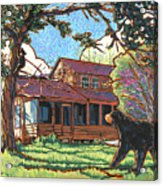 Bears At Barton Cabin Acrylic Print by Nadi Spencer