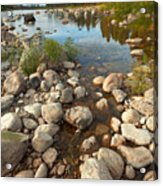 Beginnings Acrylic Print by Beve Brown-Clark Photography