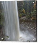 Behind The Falls Acrylic Print by Loree Johnson