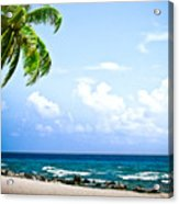 Belize Private Island Beach Acrylic Print by Ryan Kelly