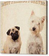 Best Friends Forever Acrylic Print by Edward Fielding