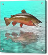 Big Fish Acrylic Print by Jerry McElroy