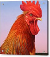 Big Red Rooster Acrylic Print by James W Johnson