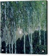 Birch Trees Acrylic Print by Aleksandr Jakovlevic Golovin