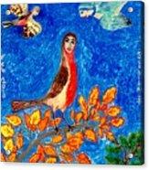 Bird People Robin Acrylic Print by Sushila Burgess