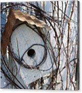 Birdhouse Brambles Acrylic Print by Lauri Novak