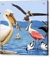 Birds With Strange Beaks Acrylic Print by R B Davis