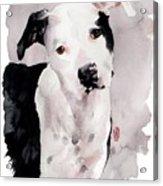 Black And White Pit Acrylic Print by Debra Jones