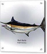 Black Marlin Acrylic Print by Ralph Martens